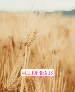 Good-friend-is