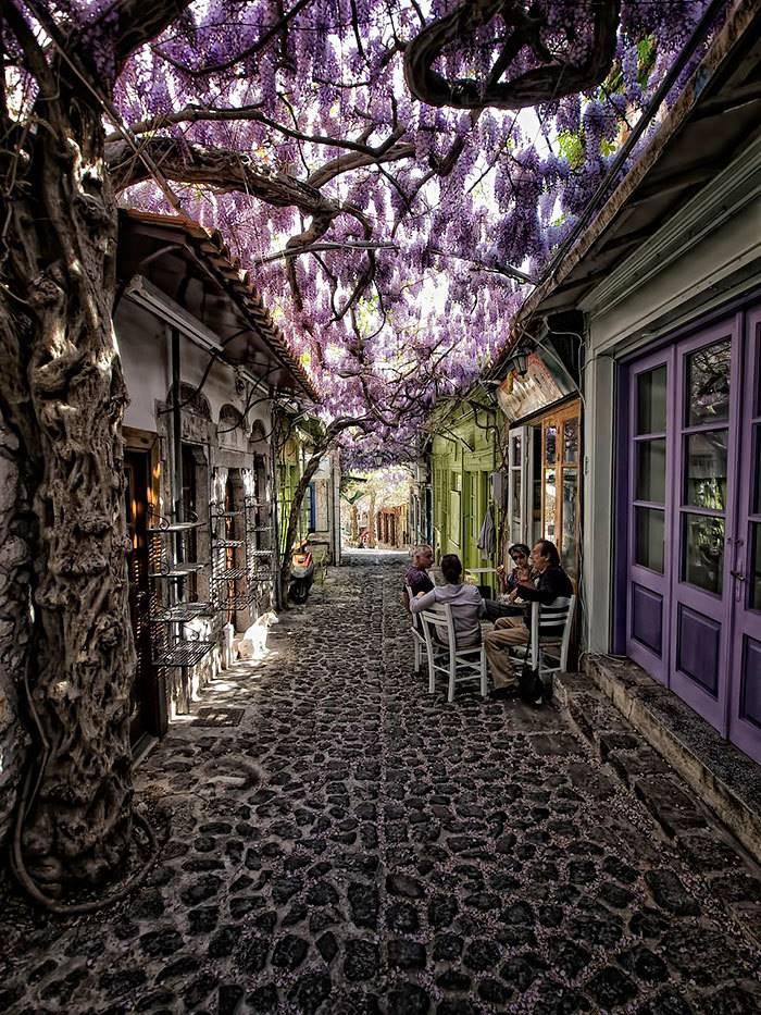 Molyvos, Lesbos, Greece
