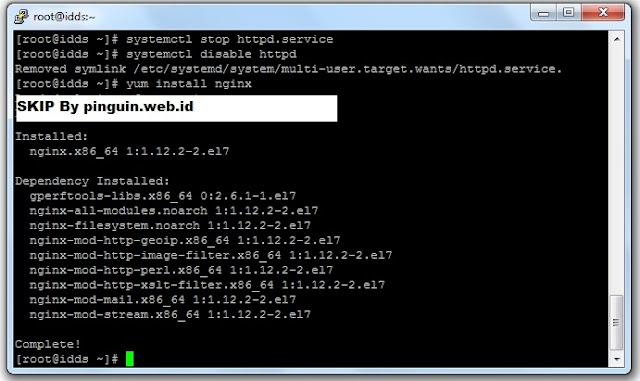 Installasi Virtualmin dengan Web Server Nginx pada CentOS 7