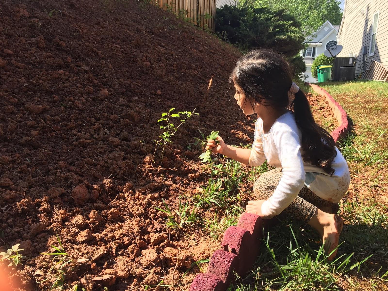 Children Learn Best in their Freeplay