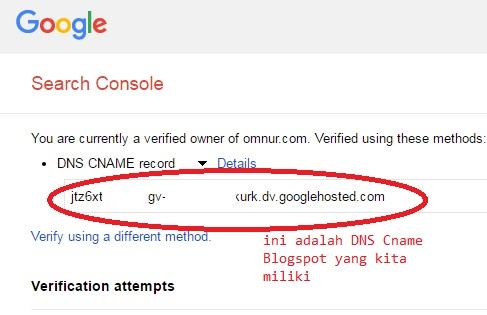 DNS CNAME Blogspot yang sudah ditemukan