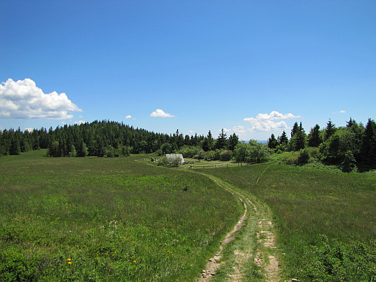 Baza namiotowa znajdująca się na polanie między wierzchołkami Lubania.