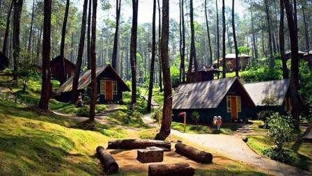 10 Destinasi Wisata Alam Favorit Bandung