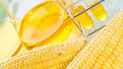 Το σιρόπι καλαμποκιού υψηλής φρουκτόζης ενισχύει την ανάπτυξη καρκινικών όγκων στο έντερο