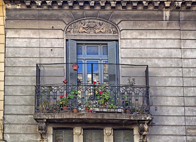 Flores en Balcón antiguo.Bs.As.