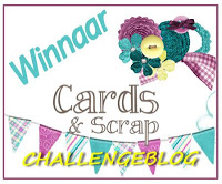 Cards & Scrap uitdaging 245