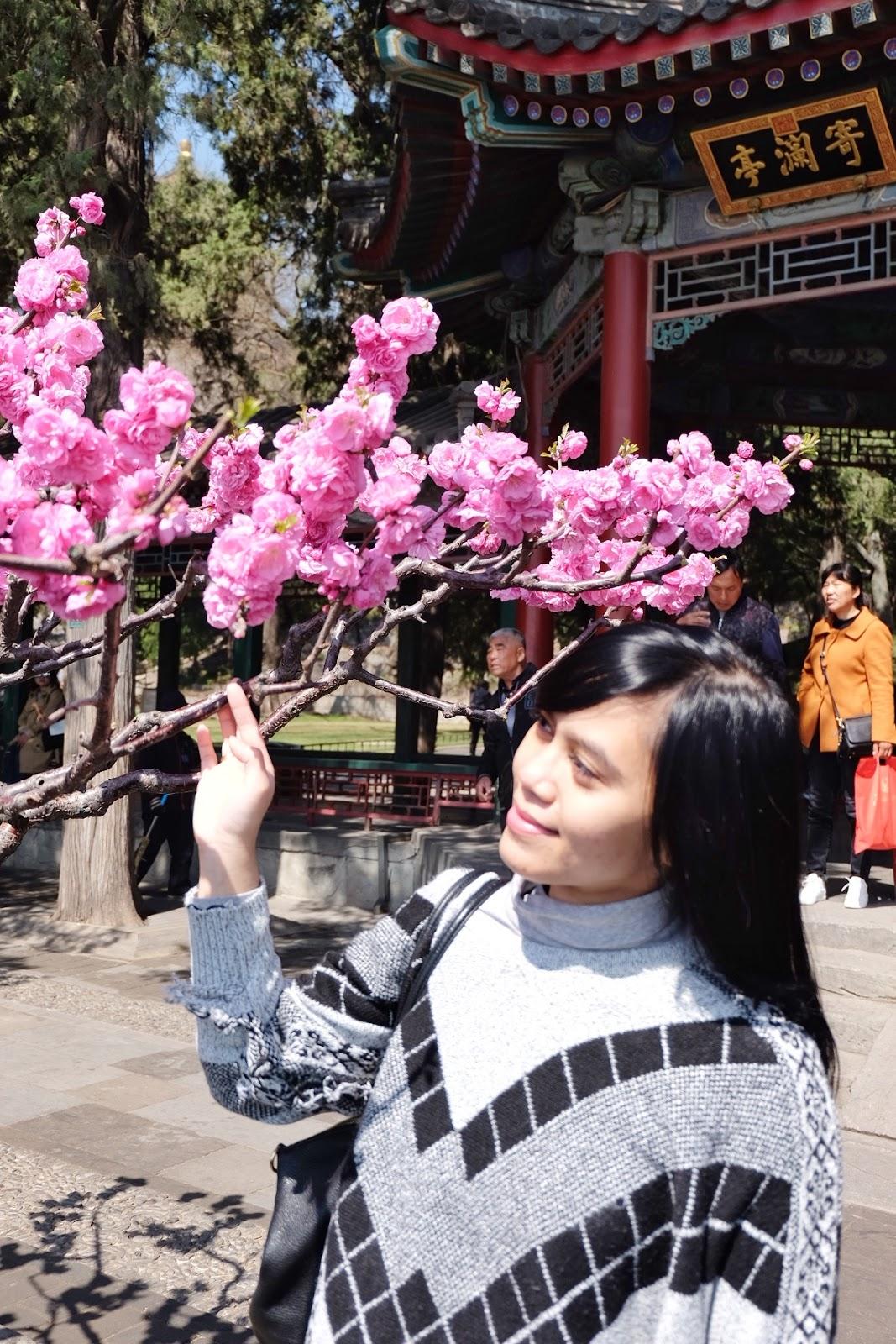 Agus yang berasal dari lumajang, jawa timur, boleh dibilang minim pengalaman traveling saat kuliah di universitas tsinghua di beijing, china pada 2000. Pengalaman Traveling Di China Beijing Dan Shanghai My Life