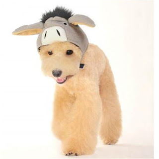 Donkey Hat Costume