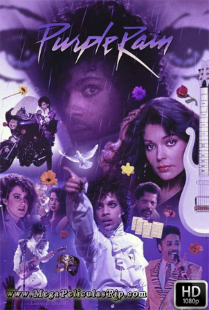 Purple Rain [1080p] [Latino-Ingles] [MEGA]