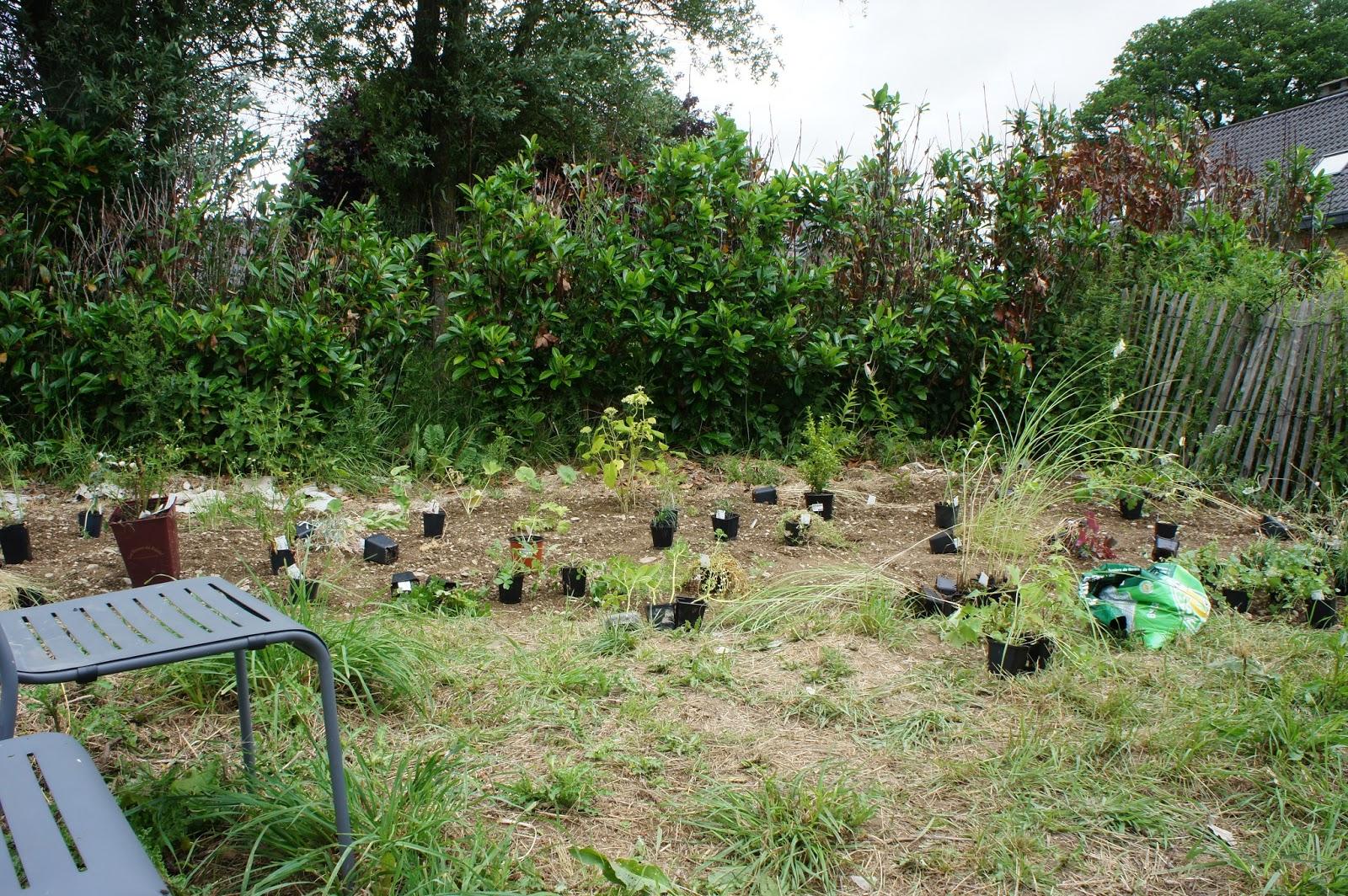 Sous le ciel ardennais le jardin blanc 4 for Jardin 4 moineaux