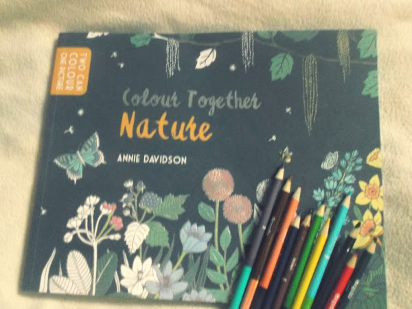 Colour Together Book {Review}