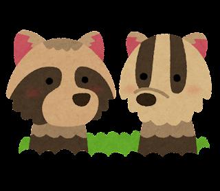 同じ穴の狢を揶揄する動物2匹のイラスト