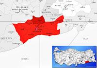 Savur ilçesinin nerede olduğunu gösteren harita
