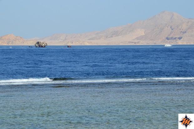 Isola di Tiran vista da Nabq