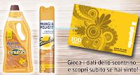 Logo ''EmulsioLegno 2018'' e vinci 25 carte regalo Il Gigante da 100€
