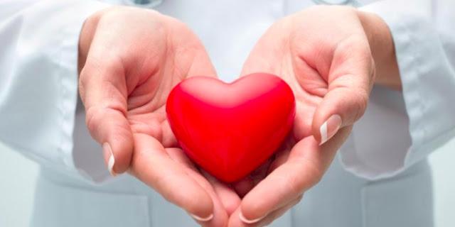 manfaat ikan salmon untuk kesehatan jantung