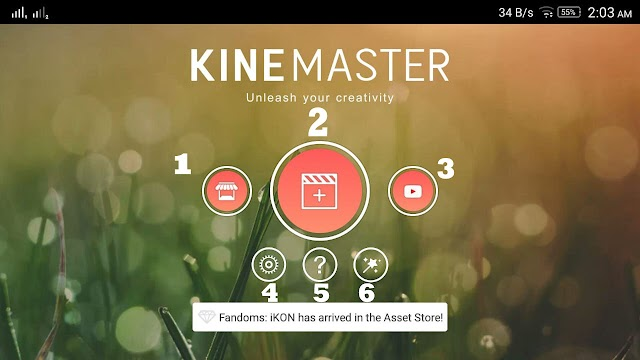 Kinemaster main interface and setting