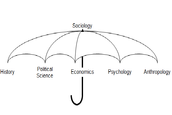 relationship btw sociology and other social sciences