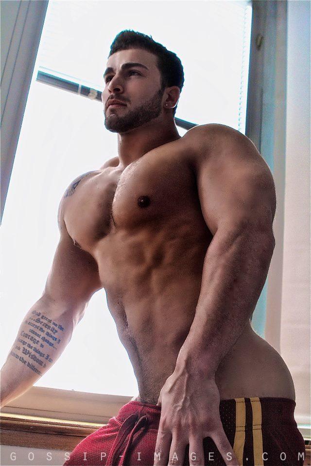 Stevo Gay 98