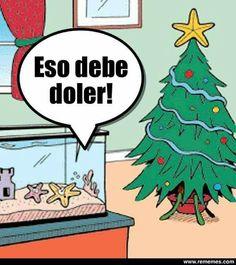 Imagenes Graciosas Para Felicitar Navidad.Memes Navidad Tormenta De Imagenes Graciosas Para Felicitar
