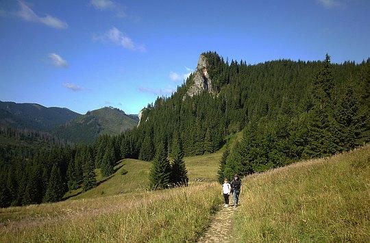 Miętusia Polana pod siodłem Przysłopu Miętusiego (1189 m n.p.m.). Z tyłu widać Zawiesistą Turnię (1296 m n.p.m.).
