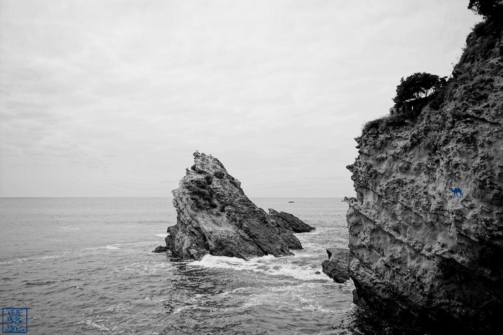 Le Chameau Bleu - Boulevard du Prince de Galles - Biarritz Sud Ouest