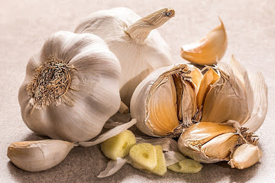 Garlic herb - Top 10 Herbs to Treat and Prevent Cancer