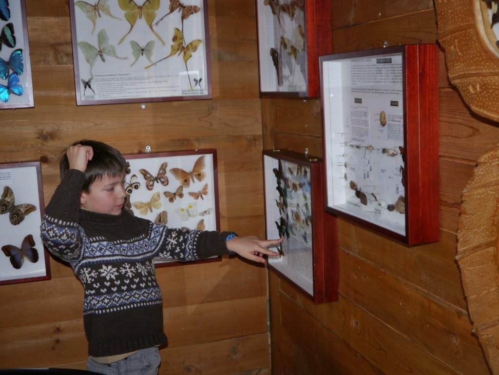 Hotel Sacacomie Québec Parc de la Mauricie animaux papillons