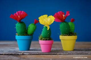 cactus in carta crespa