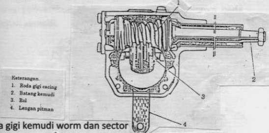 2. Model Worm dan Sektor
