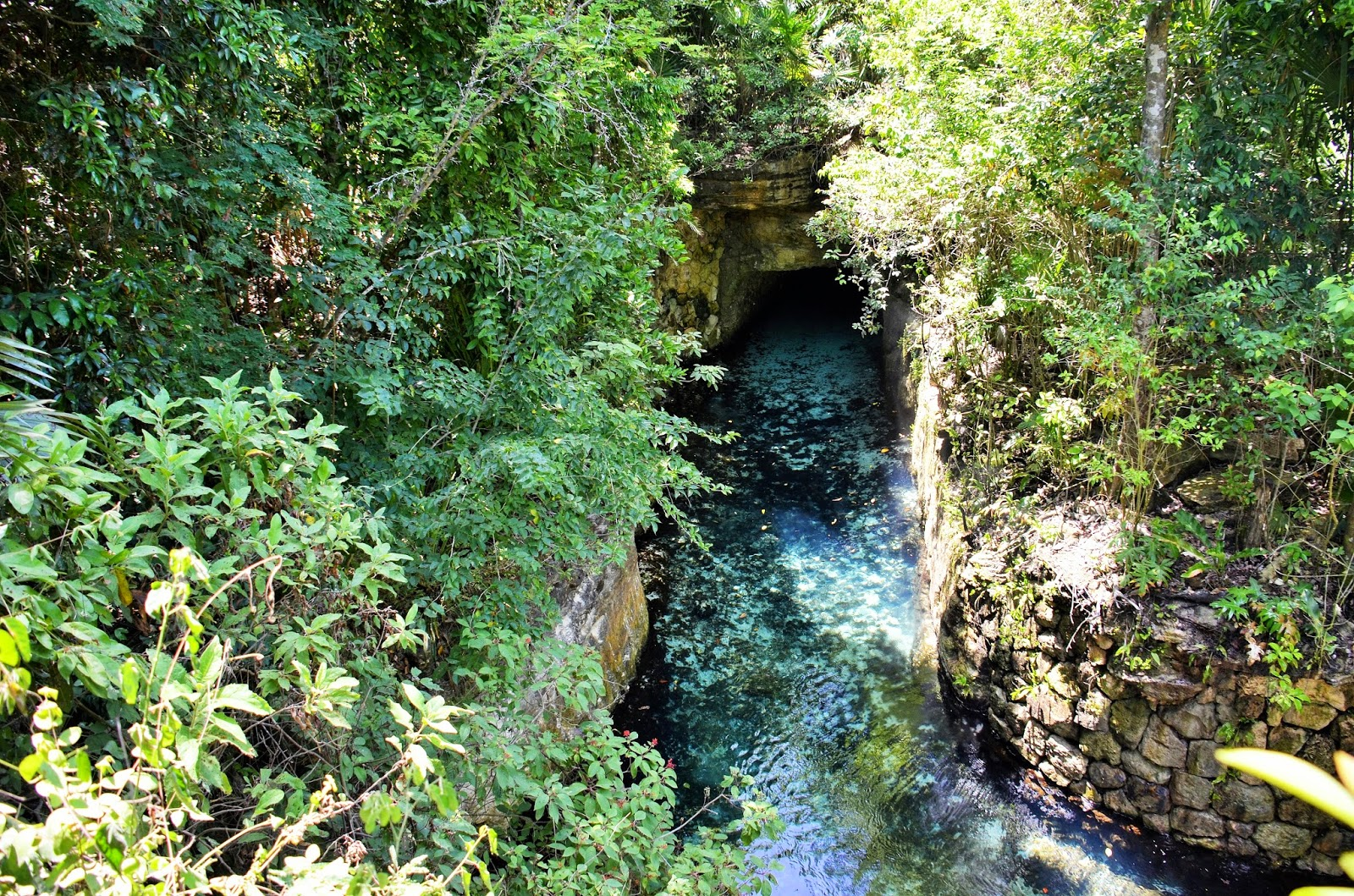 Which Mexican Adventure Park Are You?  |Xcaret Adventure Park