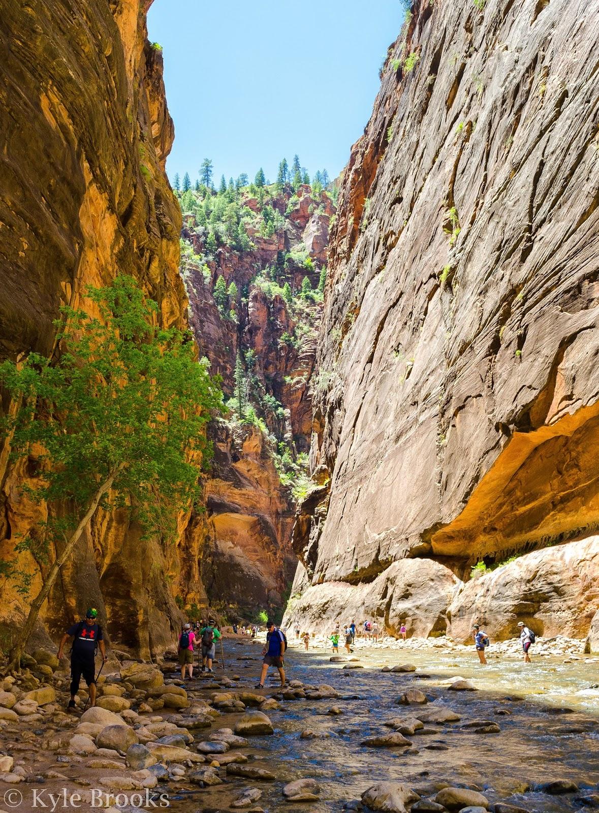 Zion National Park Trails