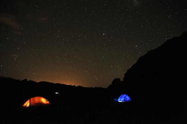 divje kampiranje nova zelandija