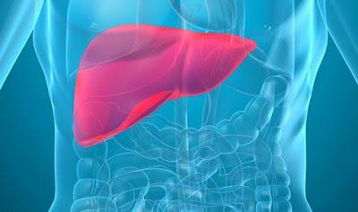 4 Makanan Alami Bersihkan Liver