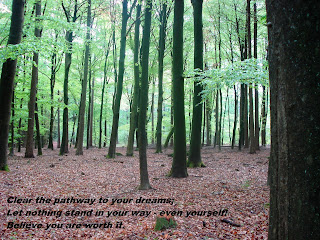 Image of a beech woods and all the tree trunks with text: Clear the pathway to your dreams, let nothing stand in your way - even yourswelf. Believe in you are worth it.