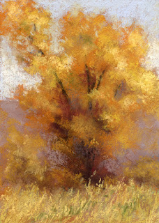 landscape painting pastel nature tree autumn fall cottonwood