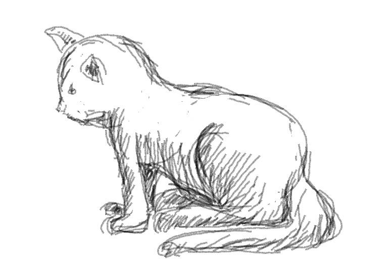 pendidikan seni visual: Panduan Melukis Kucing - Langkah ...