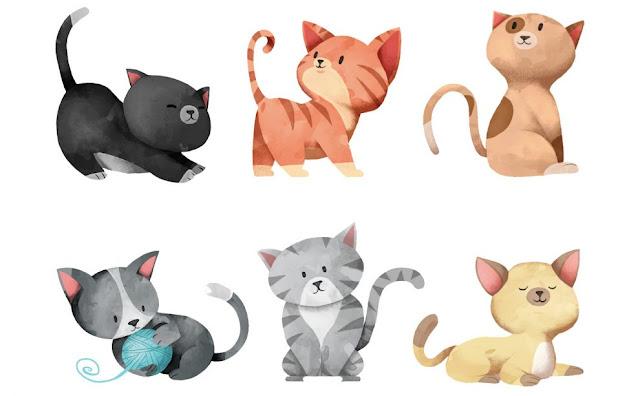 Διάλεξε Τη Γάτα Που Σε Αντιπροσωπεύει