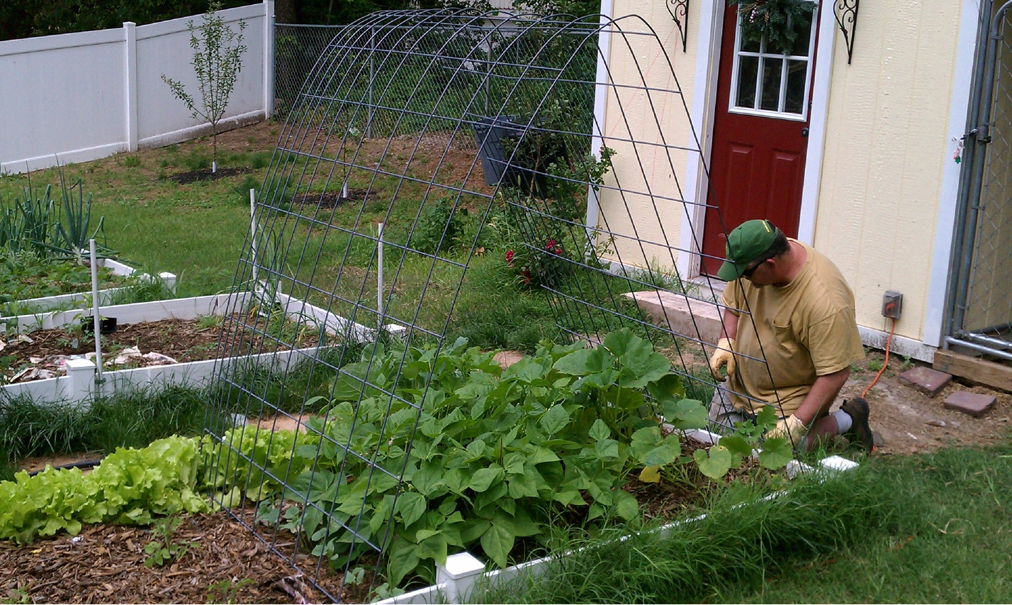Cranky Puppy Farm: Creative Gardening With Arches