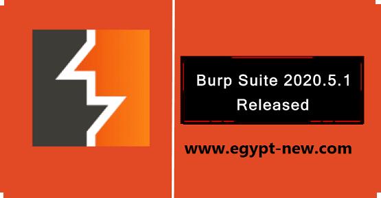 Burp Suite 2020.5.1 - إصلاح الأخطاء والتحسينات لمشرف رسالة HTTP