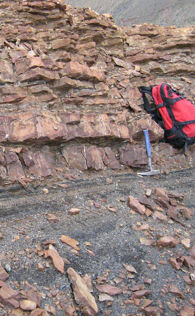 Permian-Triassic extinction event attributed to cold snap