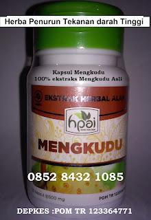 Khasiat Manfaat kapsul MENGKUDU asli untuk hipertensi/darah tinggi