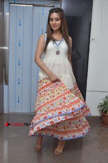 Telugu Actress Anu Emmanuel New Stills in Beautiful White Long Dress  0070.JPG