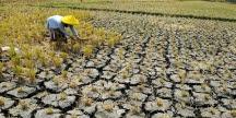 Dampak Perubahan Iklim Pada Pembentukan Tanah