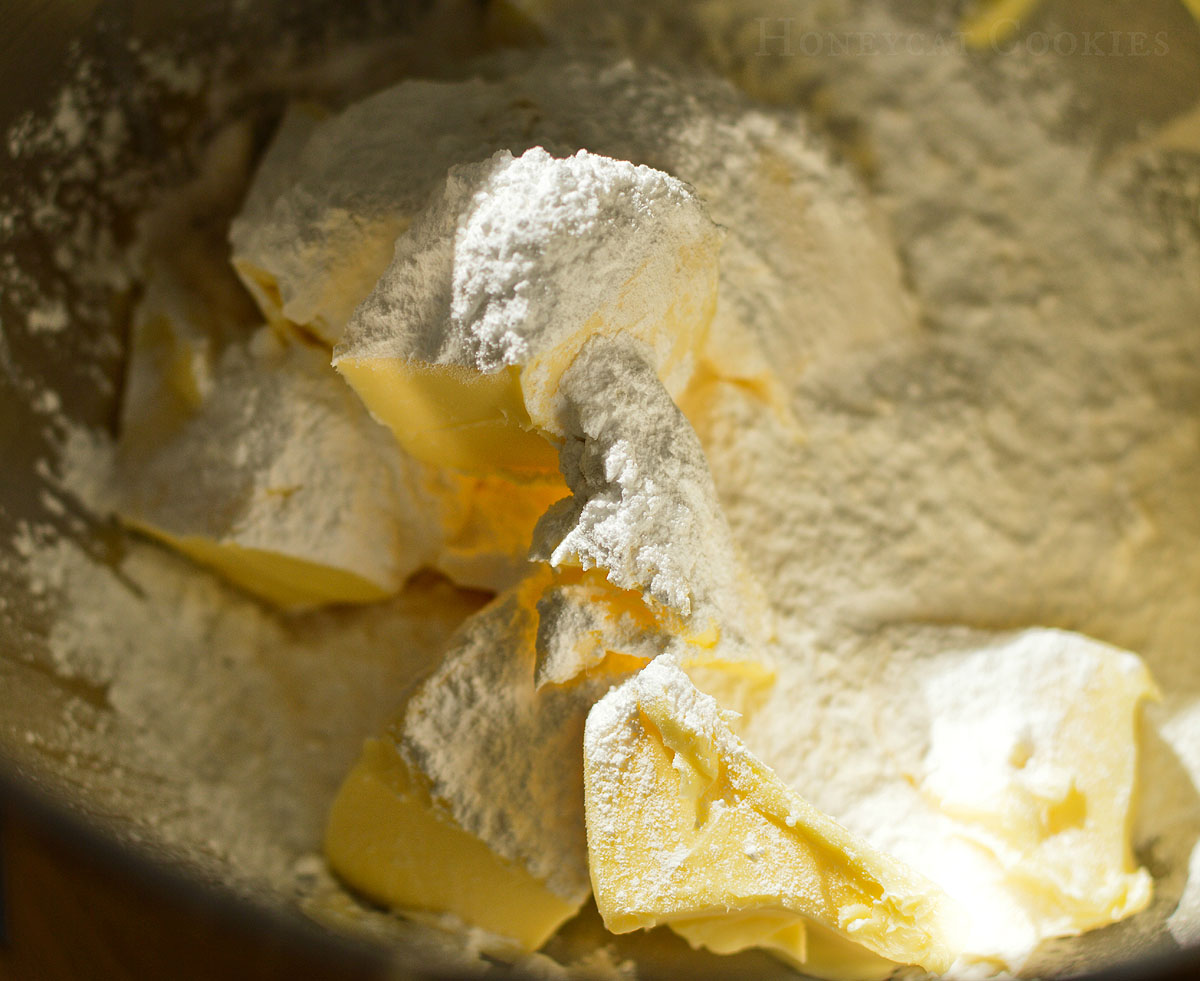 Close up of powdered icing sugar and butter before mixing, photo by Honeycat Cookies