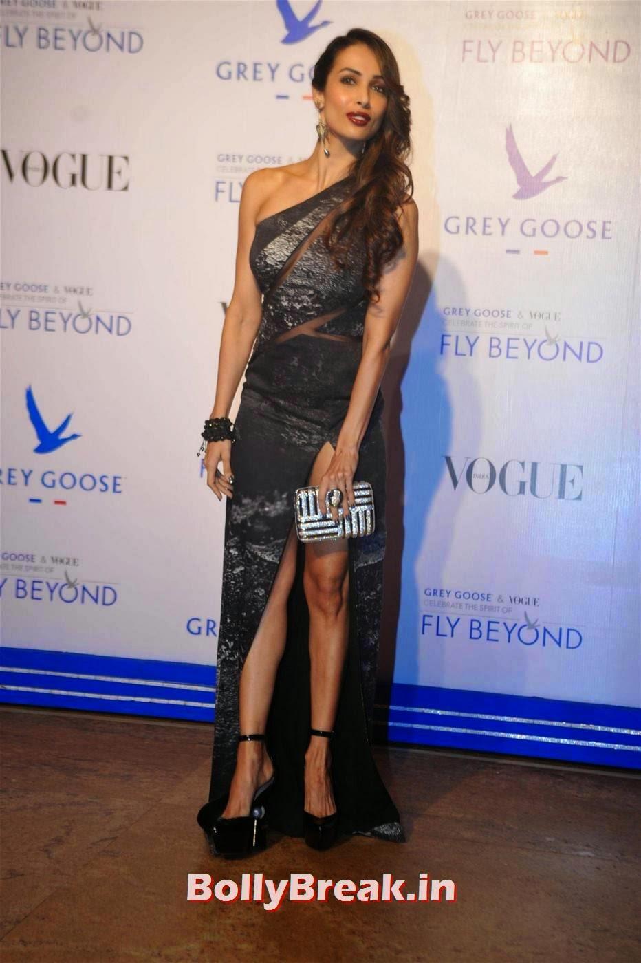 Hindi Actress Malaika Arora Khan, Malaika Arora Khan in Leg Showing Dress at Awards Function