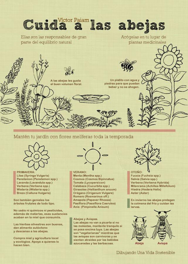 Infografía de Victor Paiam del blog Dibujando una vida sostenible