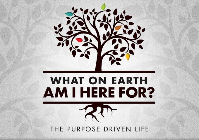 Triết lí hay tôn giáo của thầy mang mục đích gì cho cuộc sống?