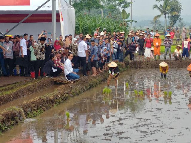 Pengakuan Jokowi soal Impor, Cara Allah Menunjukkan Siapa Dia Sebenarnya
