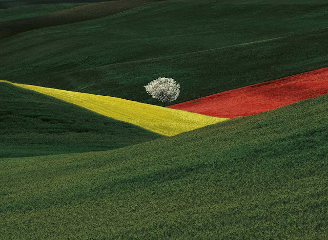 Fotografia di Franco Fontana, Imaginary Landscape, Puglia, 1995